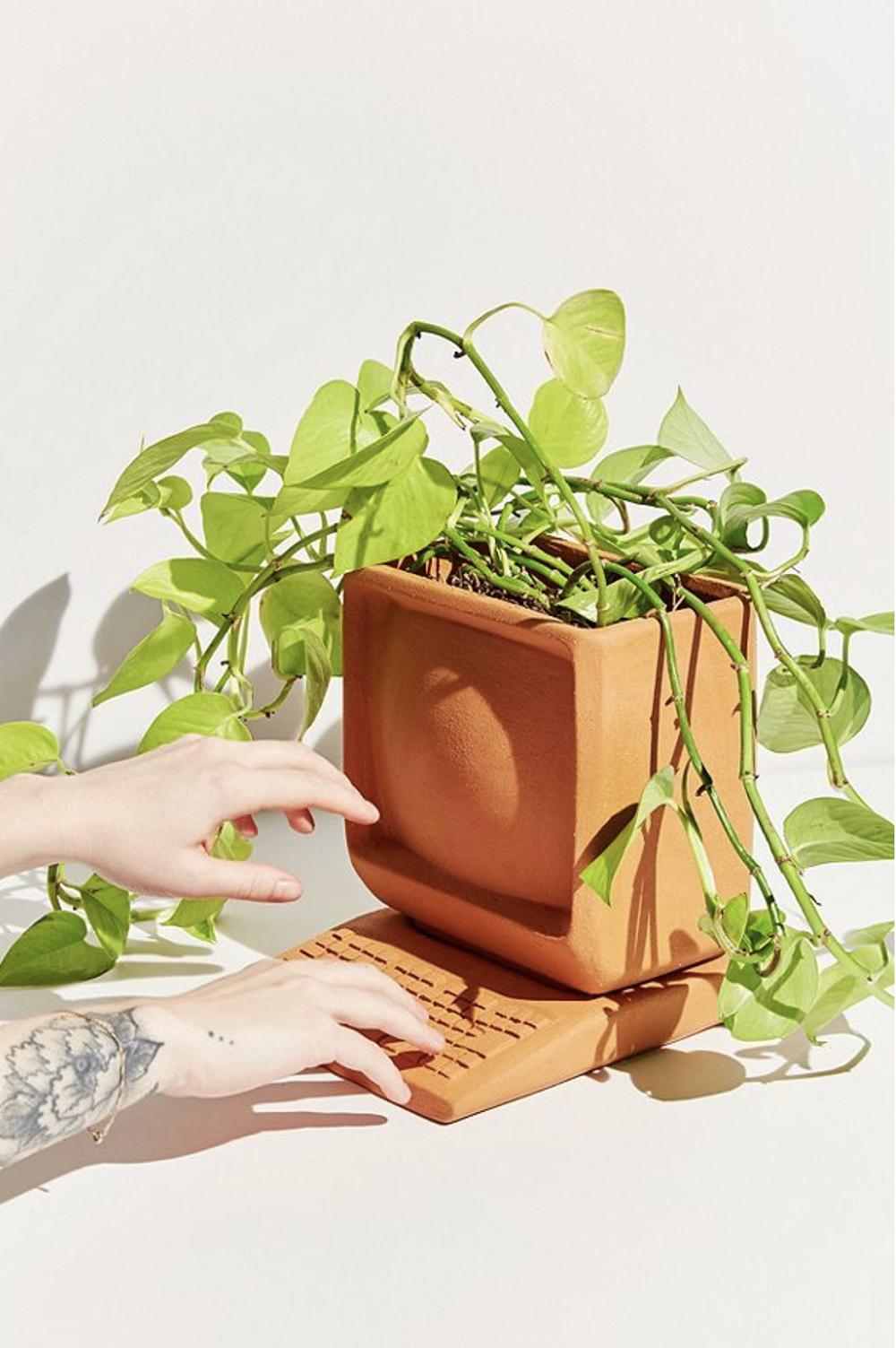 當電腦主機鍵盤變成盆栽時